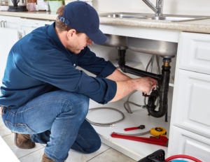 Plumbing Services in Braddyville